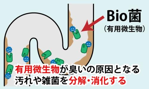 有用微生物が分解消化